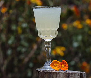 how is pisco made, peruvian pisco, types of pisco, craft pisco, craft liquor, acholado, quebranta, singani, chilean pisco, pisco peru, cocktail recipes, pisco cocktails, how to mix pisco