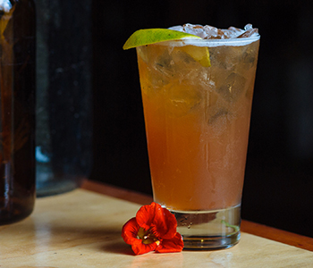 pisco cocktail, mix pisco, piscologia