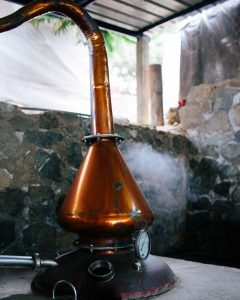 copper pot still, how to make pisco, peruvian pisco, piscologia, distilling
