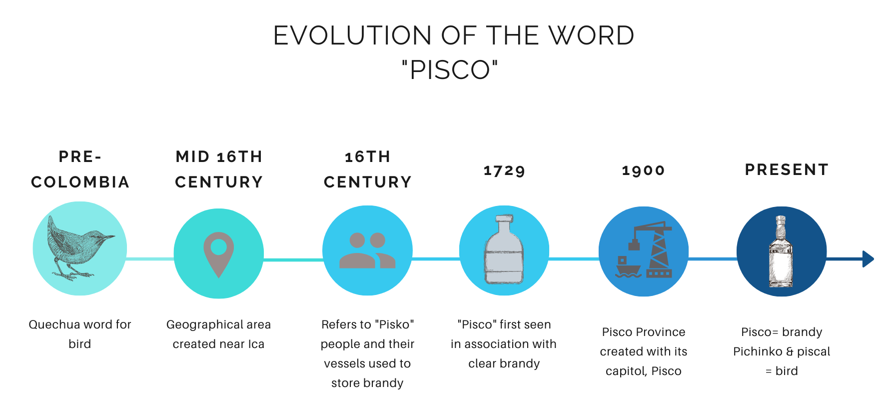 meaning of the word pisco