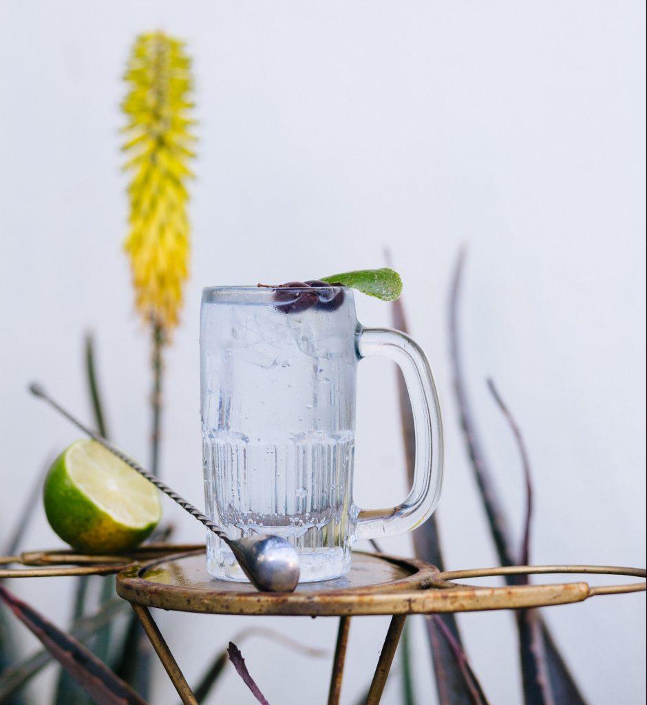 pisco tonic, Peruvian pisco, piscologia, pisco cocktails, acholado