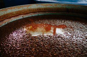 native yeasts, fermentation, how to make pisco, peruvian pisco, craft pisco, azpitia, mezcal cocktails, pisco in peru, wineries in peru