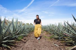 kami kenna, pisco, piscologia, women owned liquor business, peruvian pisco