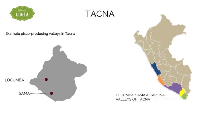 pisco tacna, map tacna D.O., mapa pisco en tacna, ruta pisco peru, pisco route peru, map pisco regions peru